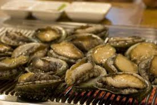 Most Expensive Abalone Pic