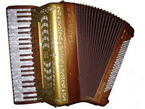 Most Expensive Accordion Pic